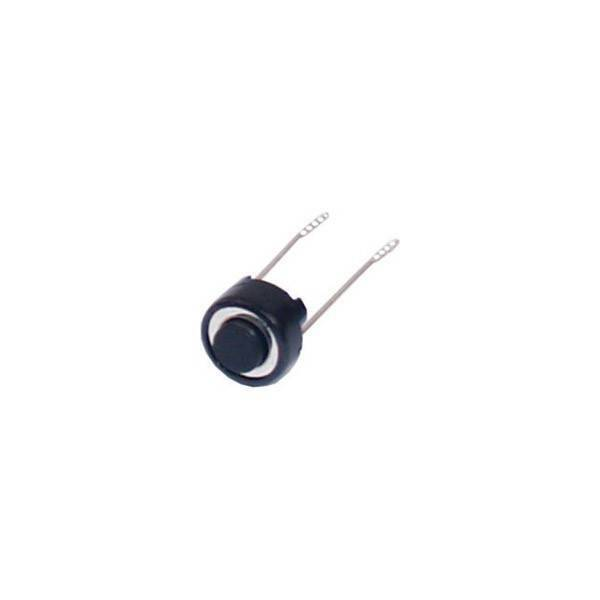 2 PIN Push Button Switch